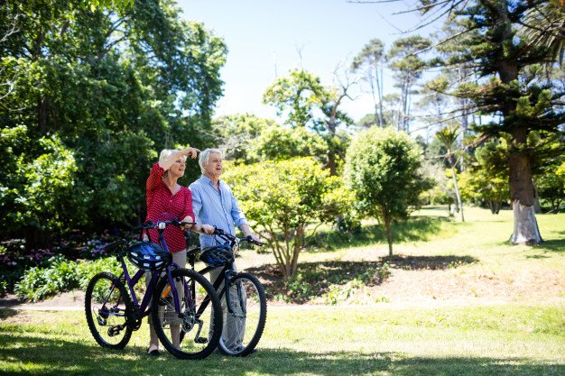 Preventing Alzheimer's Dementia:  It's All About a Journey to Better Health